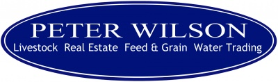 Peter Wilson Livestock and Real Estate